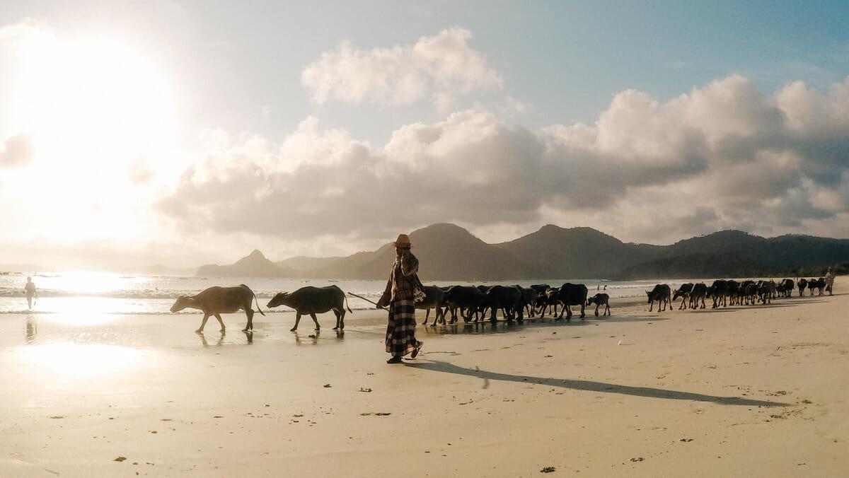 voyage-indonesie-lombok