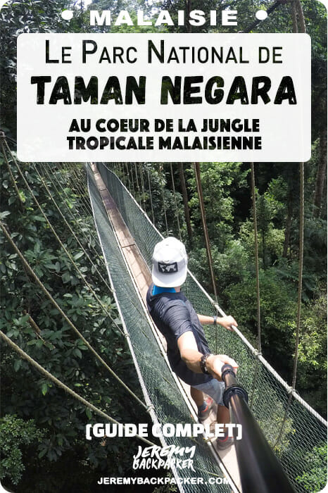 blog-taman-negara-malaisie-voyage