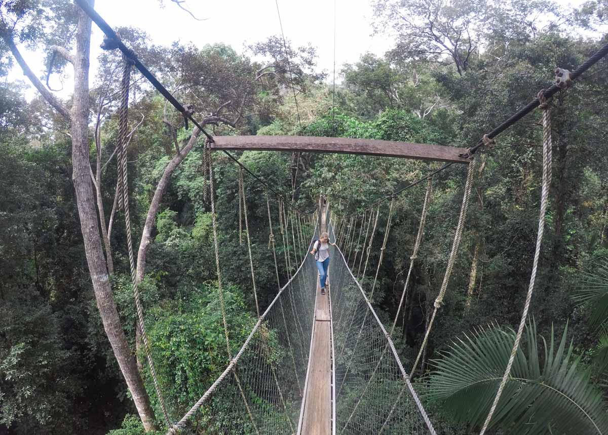 taman negara malaisie blog voyage