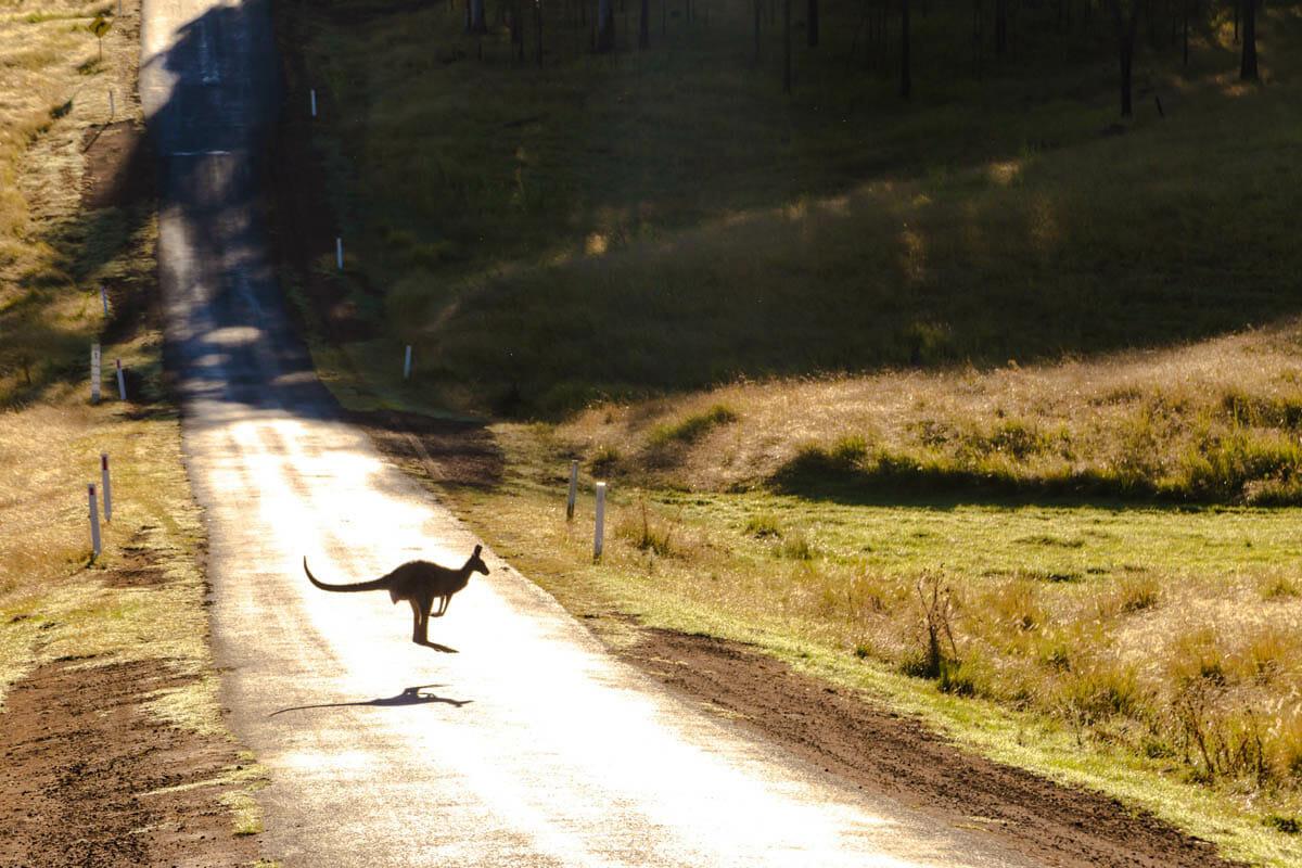 pvt australie blog voyage