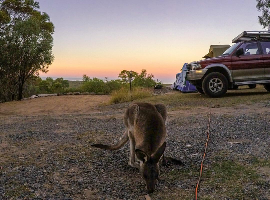 quand visiter la cote est australienne agnes water