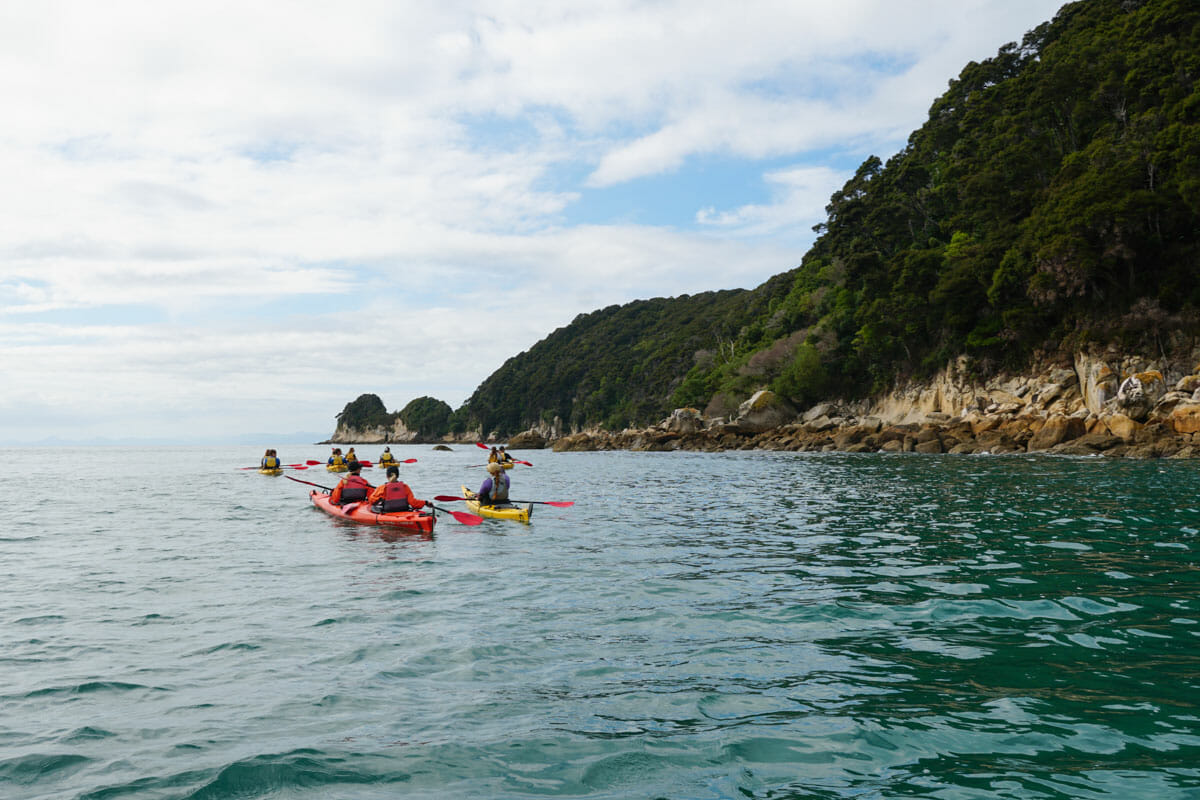 kayak abel tasman parc national